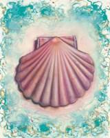 Shell Rosa Fine Art Print