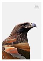 Eagle Fine Art Print