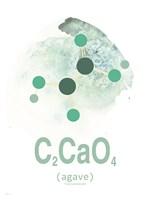 Molecule Agave Aqua Fine Art Print