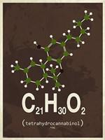 Molecule THC - Brown Fine Art Print