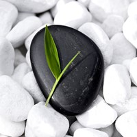 Zen Stone Fine Art Print