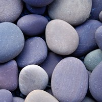 Purple Pebbles Fine Art Print