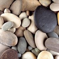 Brown Pebbles Fine Art Print
