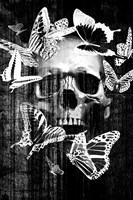 Skull Butterfly Crown Fine Art Print