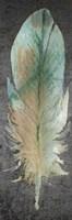 Feathered Love 1 Fine Art Print