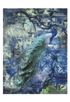 Peacock Jungle Sea Fine Art Print
