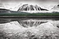 Waterfowl Lake I BW with Color Fine Art Print
