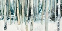 Winter Woods III Fine Art Print