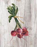 Market Vegetables III Framed Print