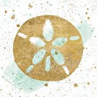 Silver Sea Life Aqua Sanddollar Fine Art Print