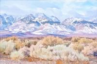 High Desert Vista III Fine Art Print