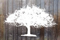 White Tree on Wood Fine Art Print