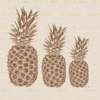 Three Pineapples Fine Art Print