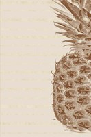 Right Side Pineapple Fine Art Print