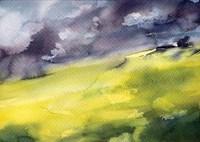 Green Grass Fine Art Print