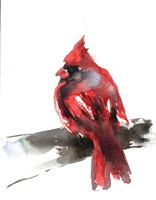 Cardinal on Branch II Fine Art Print