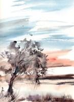Desert Sky Fine Art Print