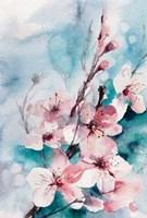 Aqua Blossoms Fine Art Print