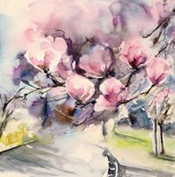 Blossom Blvd. Fine Art Print