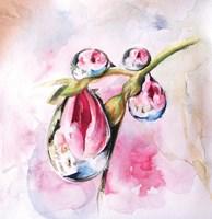 Droplets Fine Art Print