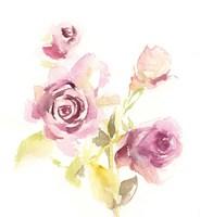 More Roses Fine Art Print