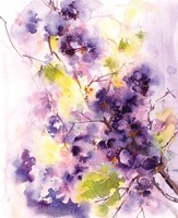 Deep Purples Fine Art Print