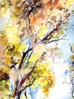 Trees Fine Art Print