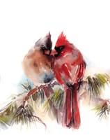 Cardinals V Fine Art Print
