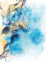 Complimentary Colors II Fine Art Print