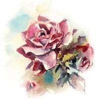 Mauve Roses Fine Art Print