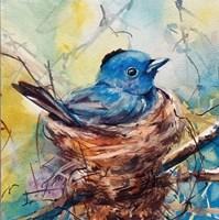 Nester Fine Art Print
