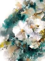 White Blossoms Fine Art Print