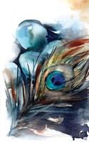 Peacock III Fine Art Print