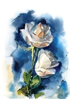 Indigo Roses Fine Art Print
