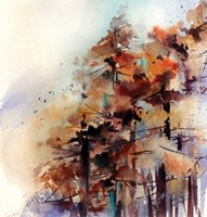 Fall Forest Fine Art Print