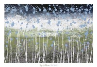 Aqua Splash Fine Art Print