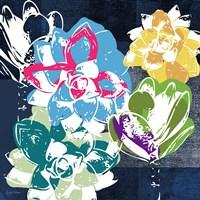 Colorful Succulents II Fine Art Print