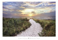 Morning Trail Fine Art Print