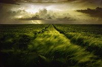 Journey To The Fierce Storm Fine Art Print
