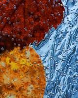 Leaves Frozen In Ice Fine Art Print
