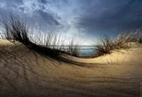 Dunes Fine Art Print