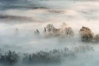 Winter Fog Fine Art Print