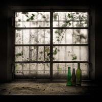 Still-Life With Glass Bottle Fine Art Print