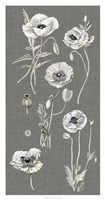 Poppy Array I Fine Art Print