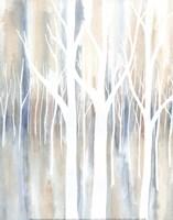 Mystica Woods II Fine Art Print