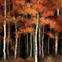 October Woods Fine Art Print