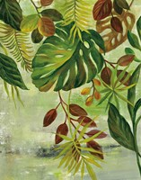 Tropical Greenery II Fine Art Print