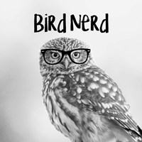 Bird Nerd - Owl Framed Print