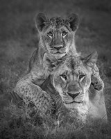 Playtime With Mama! Fine Art Print