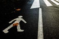 Autumn On The Road Fine Art Print